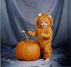 Pumpkin_sm_thumb