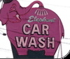 Elephantcarwash_thumb